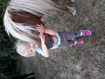 les cours ont repris , les petits cavaliers du baby-Poney sont enthousiastes !